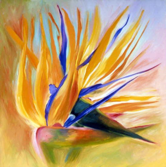 "Birds of Paradise #9, 20"" x 20"" oil on canvas, 1986, corporate collection"